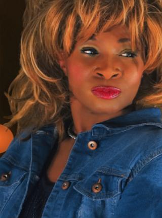 Tina_Turner_Show